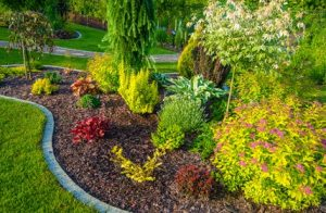 Red Deer Lawn Care